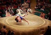 La chaine l'Équipe va diffuser du sumo à partir du 4 Juillet