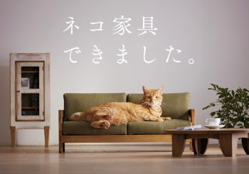 Quand des sociétés japonaises font des meubles pour les chats