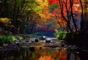 Japon : Un petit tour au sanctuaire d'Oguni avec TokyoStreetView
