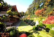 TokyoStreetView : Une balade dans les jardins du temple Ryotan-ji