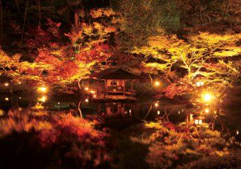 Visitez le jardin Happo-en situé à Tokyo avec TokyoStreetView