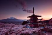 Découvrez le Japon en 8K avec une vidéo tournée avec la RED Weapon 8K